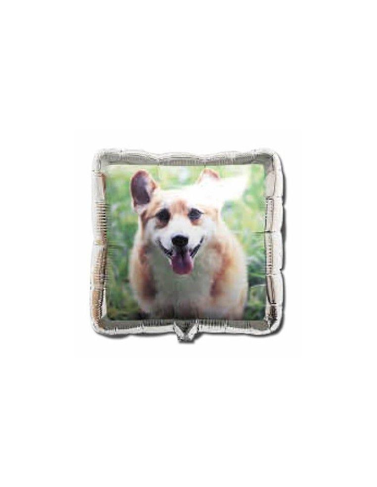 Globo Perro Foto 6 - Cuadrado 36cm Foil Poliamida