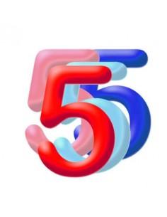 Globo PVC 35cm Numero 5 Surtido