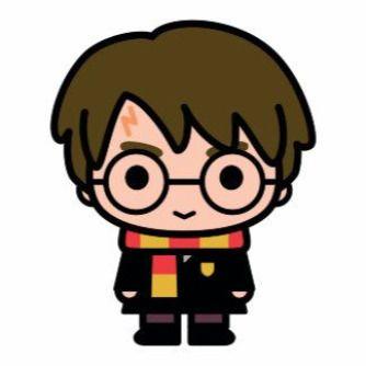 Fiesta Cumpleaños Harry Potter